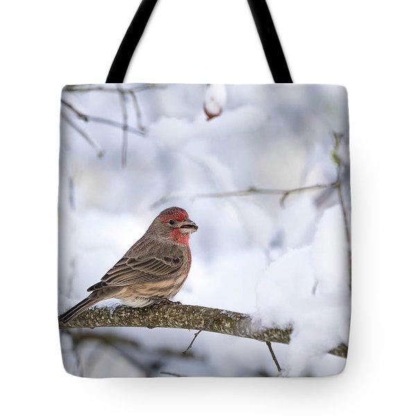 House Finch In Snow Tote Bag by Brian Bonham