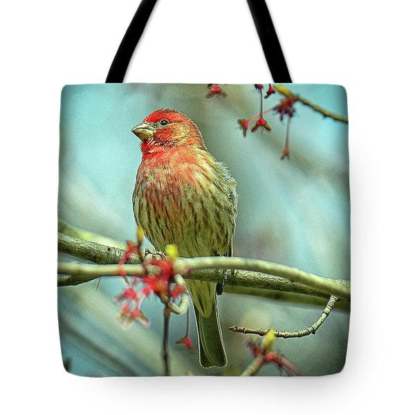 Tote Bag featuring the photograph House Finch In Spring by Rodney Campbell