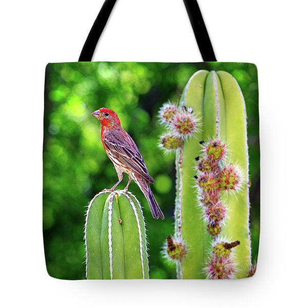 House Finch On Blooming Cactus Tote Bag