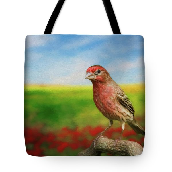 House Finch Tote Bag by Steven Richardson