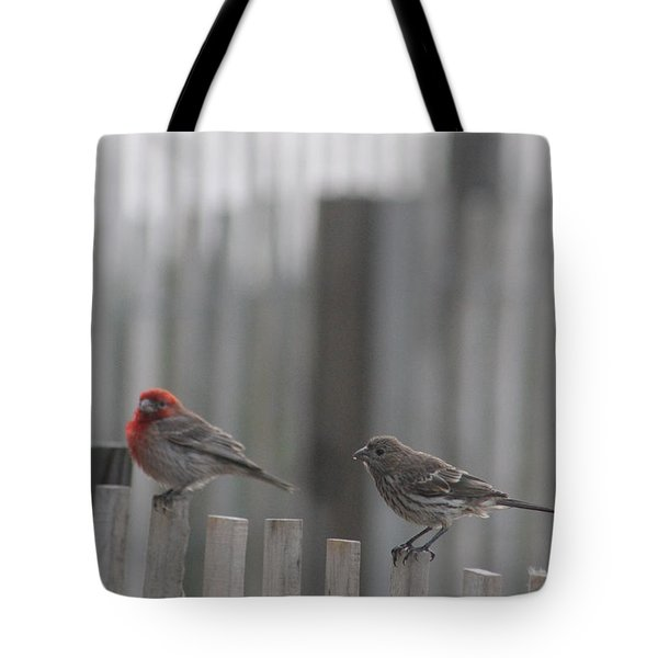 House Finches On The Fence Tote Bag by Robert Banach