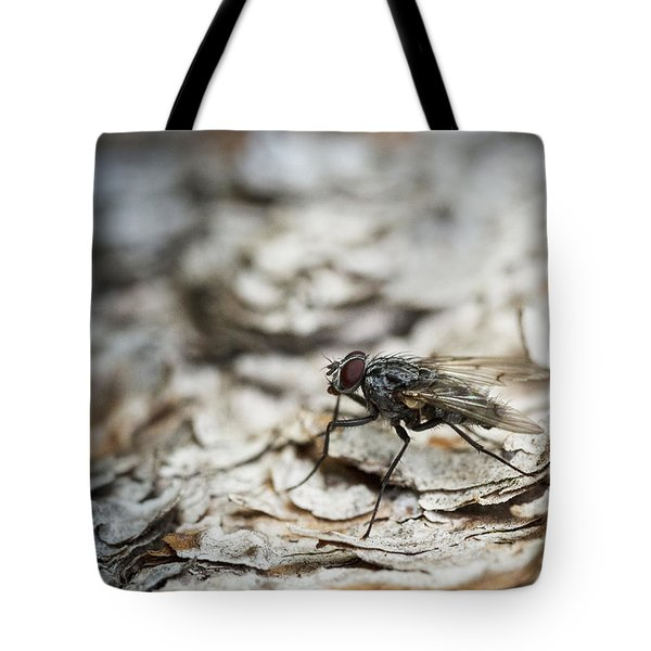 Tote Bag featuring the photograph House Fly by Chevy Fleet