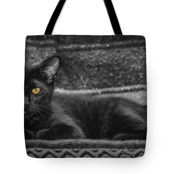 House Panther Tote Bag by Karen Slagle