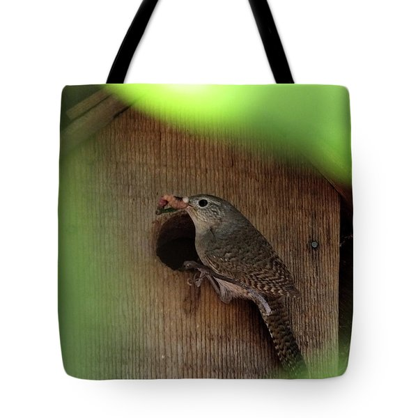 House Wren Brings Breakfast Tote Bag