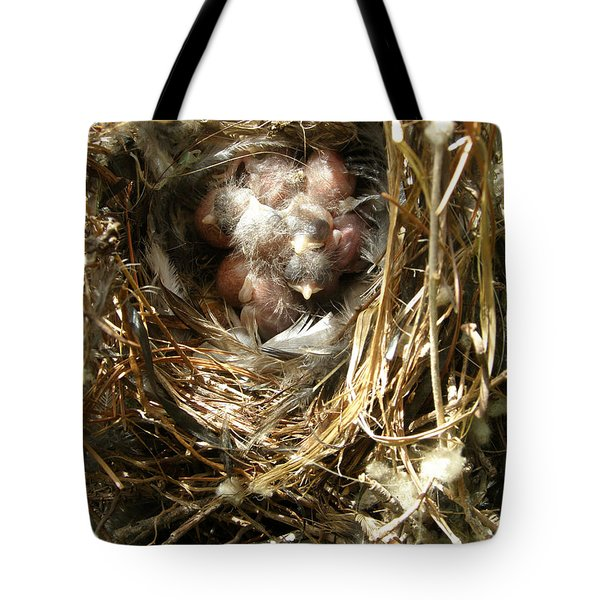 Tote Bag featuring the photograph House Wren Family by Angie Rea