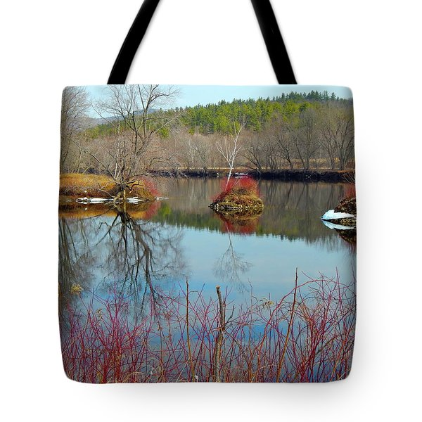 Housesitting 41 Tote Bag