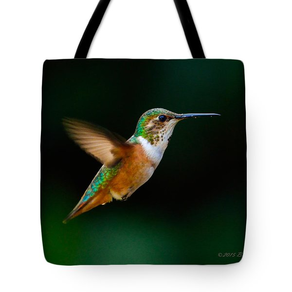 Hovering Allen's Hummingbird Tote Bag