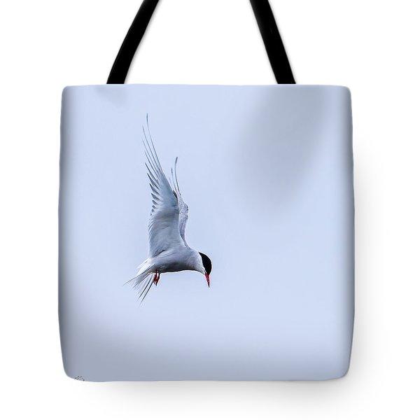 Hovering Arctic Tern Tote Bag