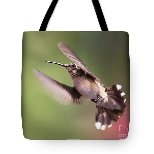 Hovering Hummer 2 Tote Bag by Kevin McCarthy