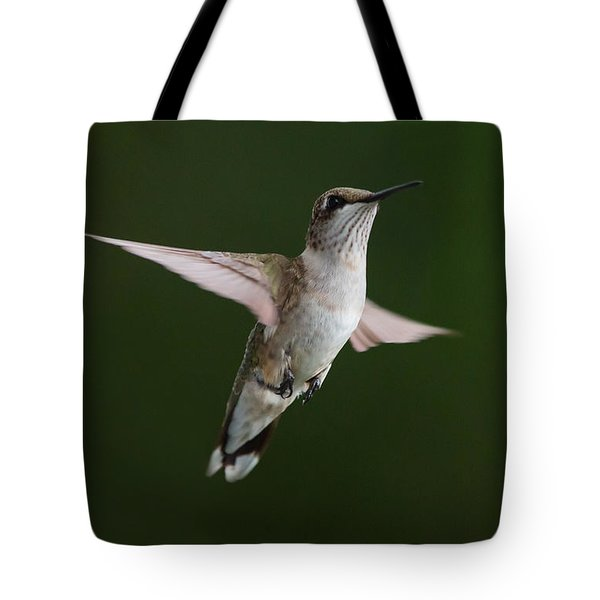 Hovering Hummer 3 Tote Bag by Kevin McCarthy