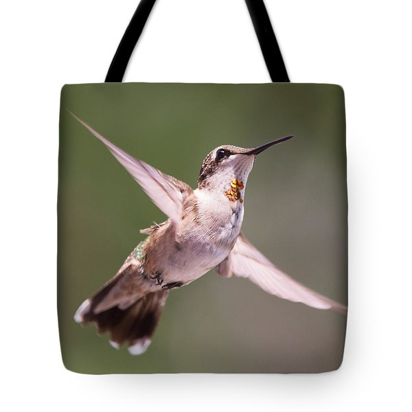 Hovering Hummer 4 Tote Bag by Kevin McCarthy