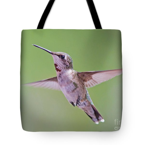 Hovering Hummingbird 5 Tote Bag