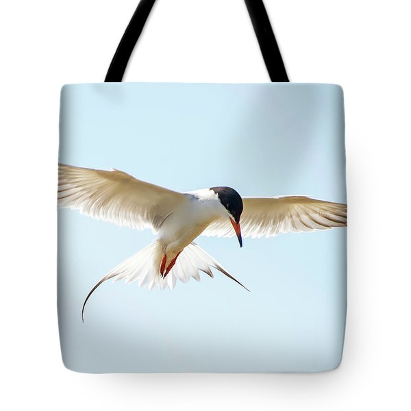 Hovering Tern Tote Bag