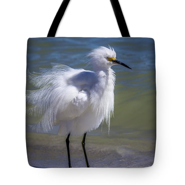 How Do I Look Tote Bag
