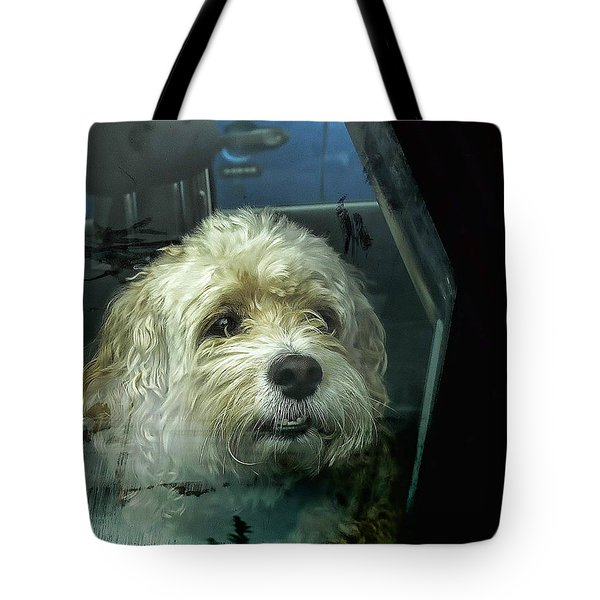 How Much Is That Doggie In The Window Tote Bag