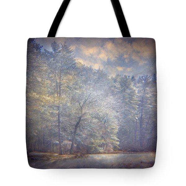 Howe State Park In Winter Tote Bag