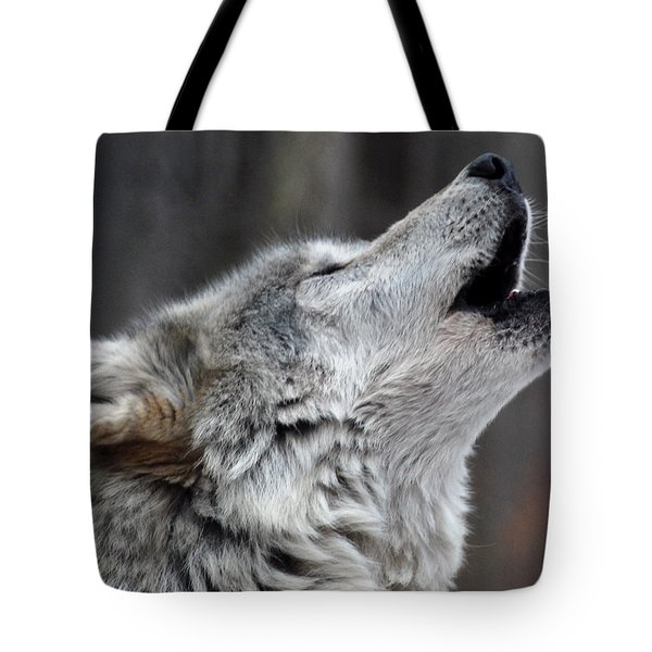 Howl Tote Bag by Richard Bryce and Family
