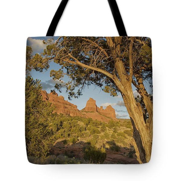 Huckabee Tote Bag by Tom Kelly