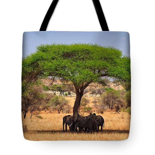 Huddled In Shade Tote Bag by Adam Romanowicz