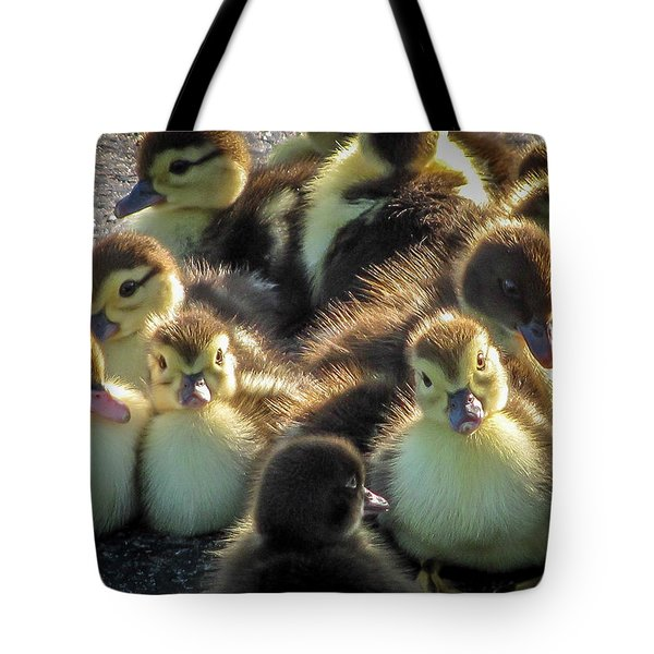 Huddled Together				 Tote Bag