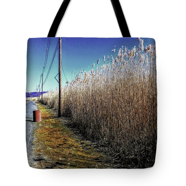 Hudson River Winter Walk Tote Bag