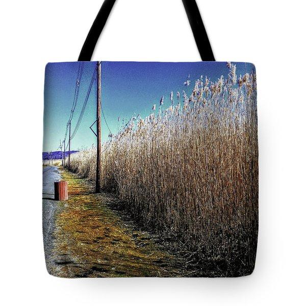 Hudson River Winter Walk Tote Bag