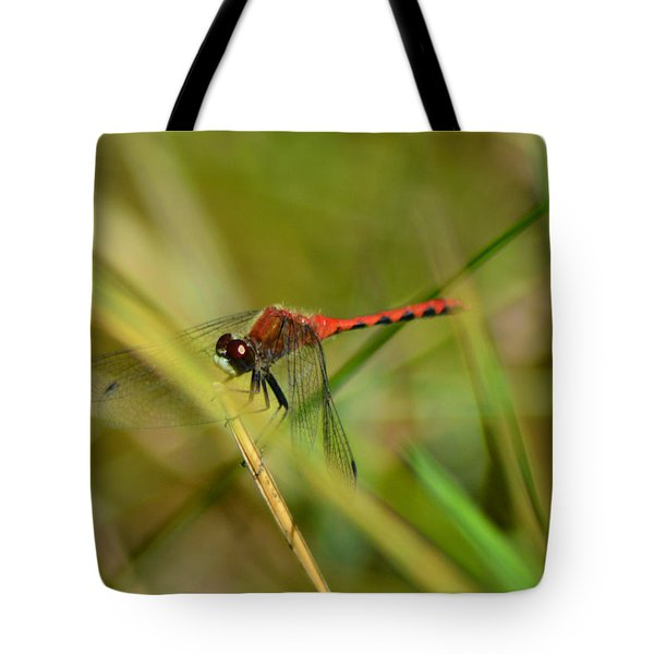 Tote Bag featuring the pyrography Hudsonian Whiteface Dragonfly by Sally Sperry