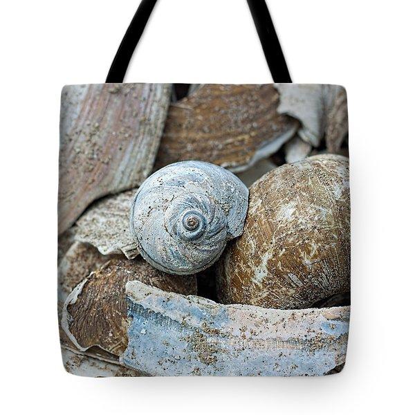 Hues Of Blue Tote Bag