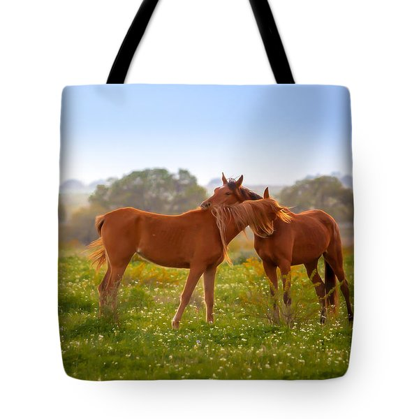 Tote Bag featuring the photograph Hug It Out by Melinda Ledsome