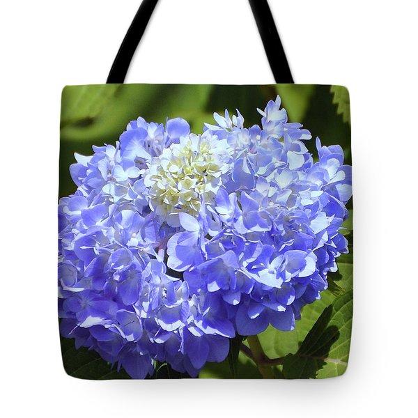 Huge Hydrangea Tote Bag by Al Powell Photography USA
