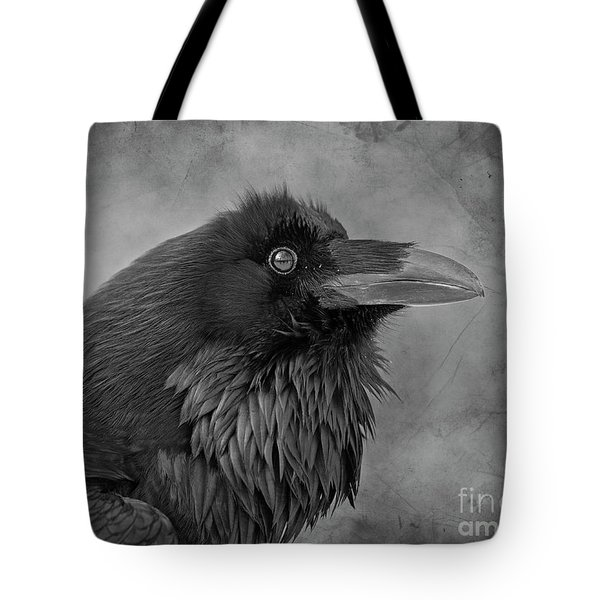Tote Bag featuring the photograph Huginn... by Nina Stavlund