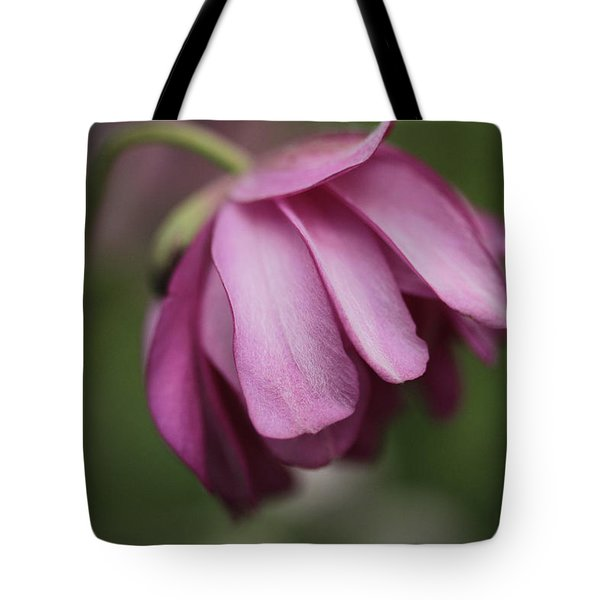 Tote Bag featuring the photograph Humble Beginnings by Connie Handscomb