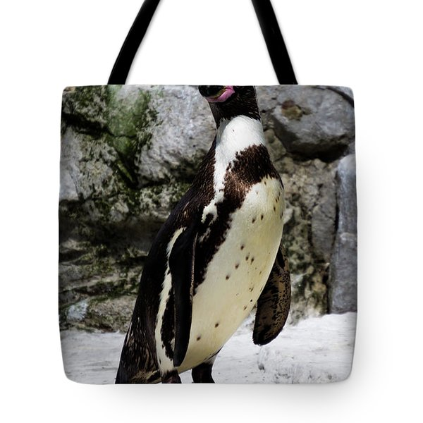 Tote Bag featuring the photograph Humboldt Penguin by Scott Lyons