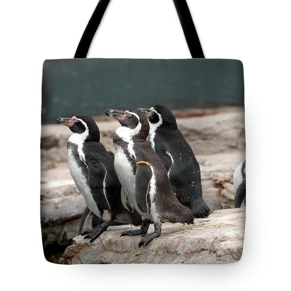 Humboldt Penguins Tote Bag