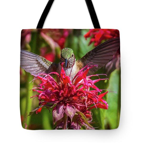 Hummingbird At Eagles Nest Tote Bag