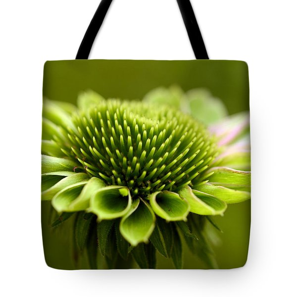 Humming Bird Feeder Tote Bag by Wanda Brandon
