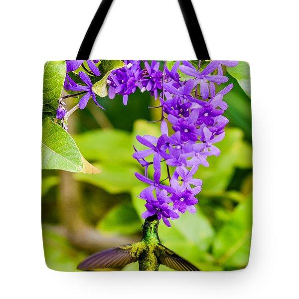 Humming Bird Flowers Tote Bag