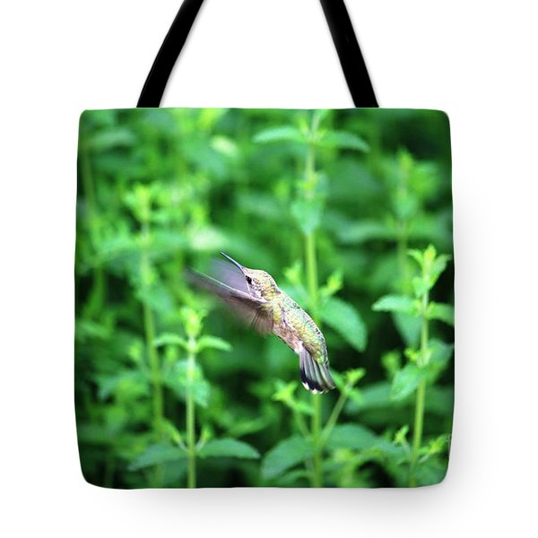 Humming Bird In Flight Tote Bag