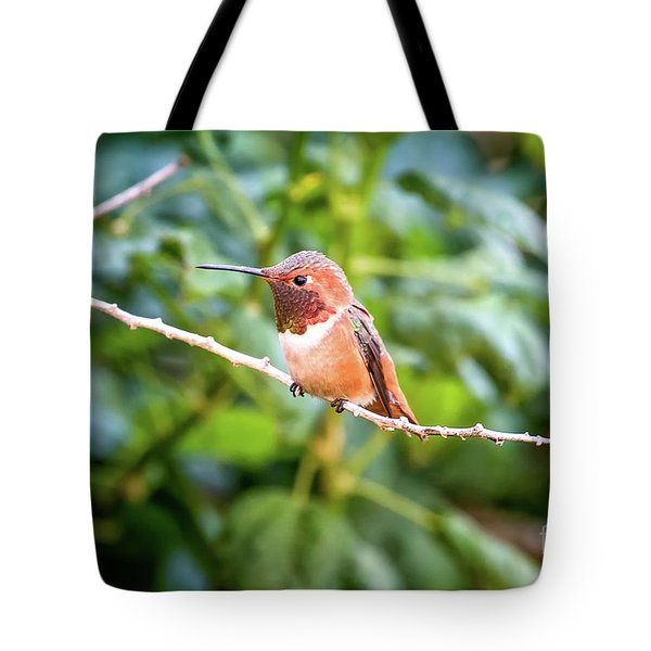 Humming Bird On Stick Tote Bag by Stephanie Hayes