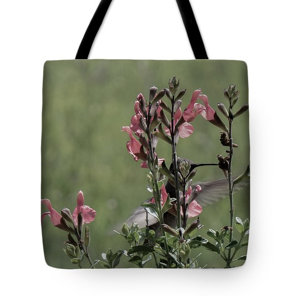 Hummingbird 1 Tote Bag