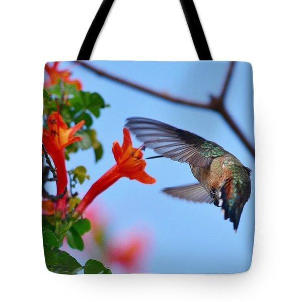 Hummingbird Acrobat II Tote Bag