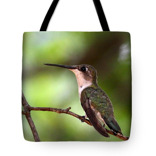 Hummingbird - Afternoon Ruby Tote Bag by Travis Truelove