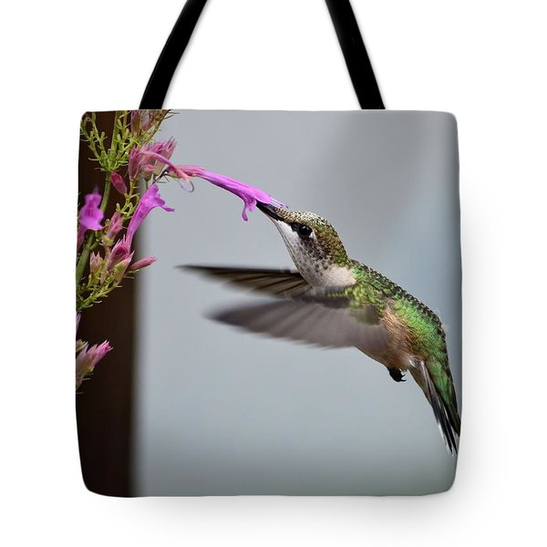 Hummingbird And Agastache Tote Bag