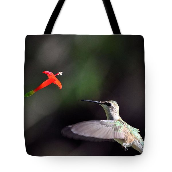 Hummingbird And Cardinal Climber Tote Bag