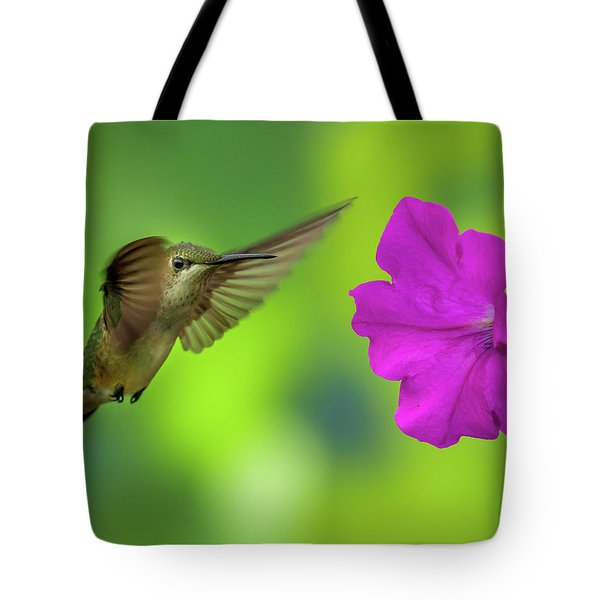 Hummingbird And Flower Tote Bag