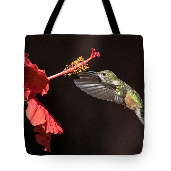 Hummingbird And Hibiiscus Tote Bag
