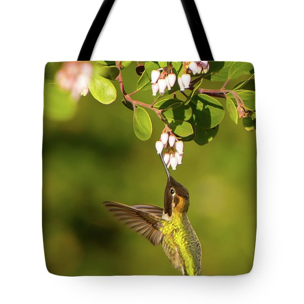Hummingbird And Manzanita Blossom Tote Bag