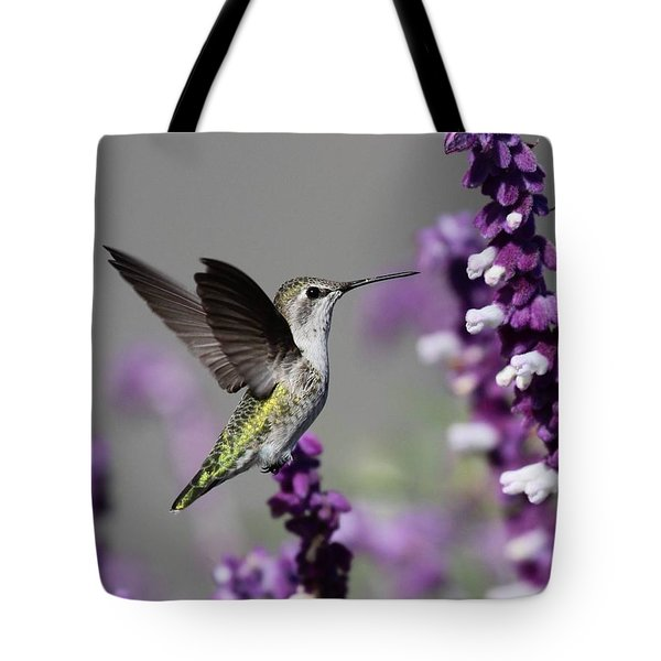 Hummingbird And Purple Flowers Tote Bag