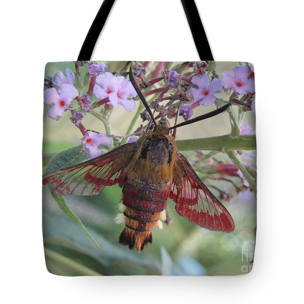 Hummingbird Butterfly Tote Bag