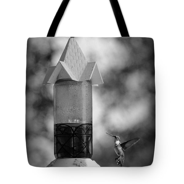 Hummingbird - Bw Tote Bag